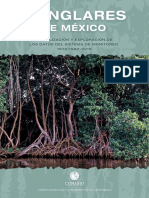 Manglares Mexico 2015