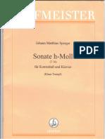 sperger - sonate h-moll (piano) (1).pdf
