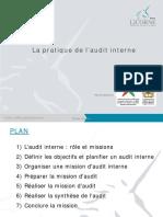 La Pratique de Laudit Interne- Mjs