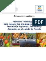 Manual Inifap Puebla Costo Por Hectarea Cultivos Varios fdsfddsfs