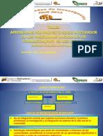 taller-de-proyecto-socio-integrador-2014.pptx