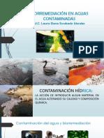 Biorremediación en Aguas Contaminadas Con Hidrocarburos