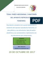S2 - Anatomia del aparato reproductor femenino.docx
