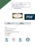 INFORME PRELIMINAR 5533