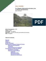 refugio rocoso El Gigante mesoamerica arcaica.pdf