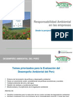 Responsabilidad Ambiental Austral Group