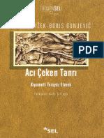 Slavoj Zizek - Acı Çeken Tanrı.pdf