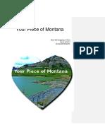 a piece of montana
