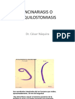 Uncinariasis o Anquilostomiasis