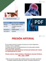 Clase 3 Anatomía y Fisiología Básica