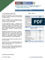 Modelo Del Informeeee