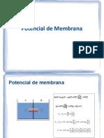 3.Potencial de Membrana