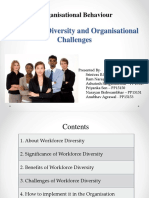 Workforce Diversity and Organisational Challenges