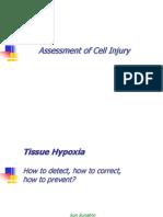 Tissue Hypoxia Dr Sunatrio