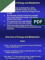 Metabolism Komponen Pangan