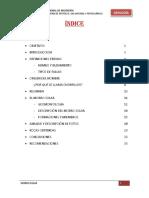270491079-Informe-de-Geologia-Morro-Solar.docx
