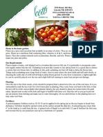 plums info.pdf