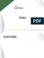 4. Formato Diapositivas Msp
