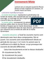 Lenvironnement-mixte.pptx