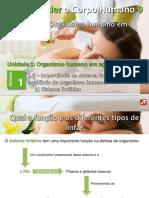 10_linfatico (1)