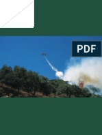 medios aereos plan infoca.pdf