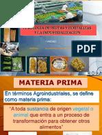 Fruta y Su Industrialización - Copia