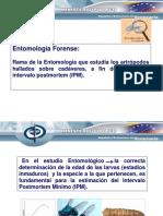 estudio_entomologico