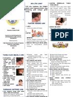 62985_leaflet LNH.doc