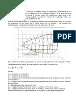 310233004-Metodo-de-Horton.docx