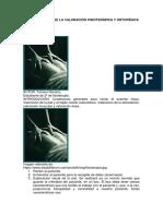 Generalidades de La Valoración Fisioterápica y Ortopédica