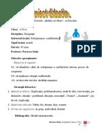 proiect_didactic_conflicte_flocea.doc