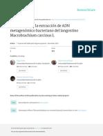 Protocolo Para La Extraccion de ADN Metagenomico b