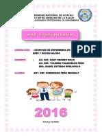 Pae Comunitario Para Aa.hh Micaela (1)