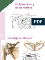 Anatomía, Biomecánica y Evaluación de Hombro