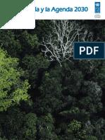Amazon Agenda 2030 Es