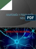 1. Neurona (1)