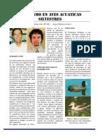 botulismo en aves.pdf