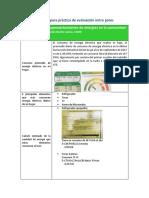 Formato Para Práctica de Evaluación Entre Pares