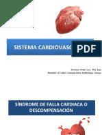 4. Síndrome de Falla Cardiaca