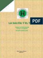 Trabajo de Investigacion La Salvia y El Tomillo