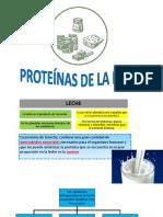 Proteínas de la leche