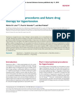 Interventional Procedures and Future Drug Therapy for Hypertension