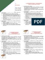triptico PESTE.doc