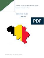 Afaceri_Belgia