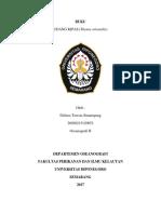 Buku identifikasi udang kipas