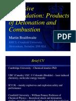 Braithwaite.pdf