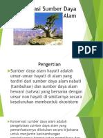 Konservasi Sumber Daya Alam