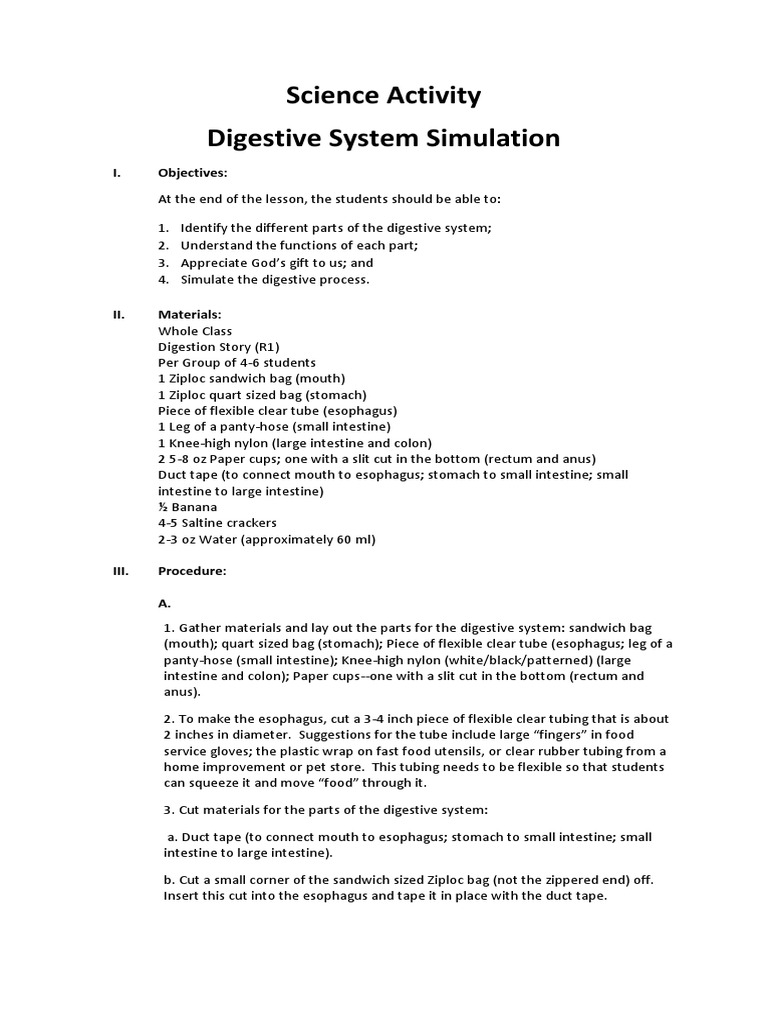 Science Activity Human Digestive System Gastrointestinal Tract