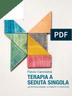 Terapia a Seduta Singola eBook (Flavio Cannistrà)