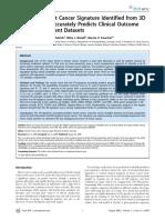 33. Prognostic B C Signaturre.pdf